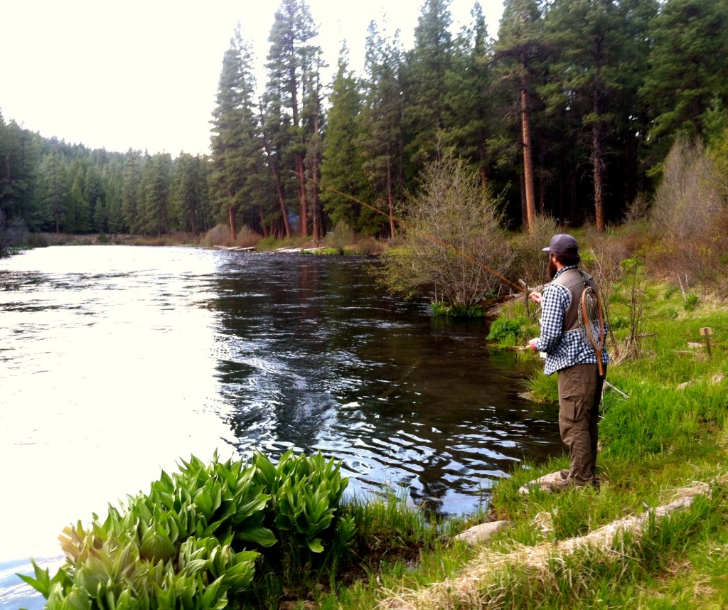 Gone fishin 39 home waters fly fishing for Roaring river fishing hours